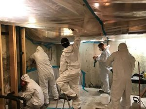 Mold Removal Procedures